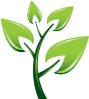 بررسی تاثیراستفاده از چسبها برمحیط زیست